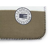 Block striped fleece throw, white/green 130*170 – Lexington