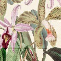 Pappersservett orkide 20-p – Sköna ting