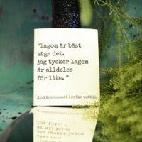 """Erika Tubbin – Disktrasa """"Lagom är bäst…"""""""