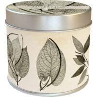 Doftljus Vanilj/Pepparväxter